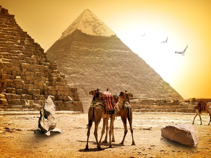 Ваш идеальный день в Каире