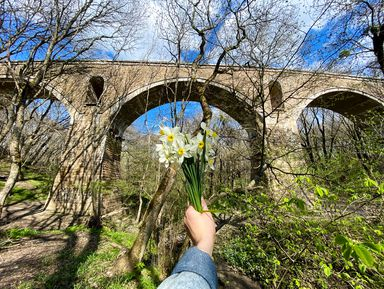 Хайкинг наНемецкий мост