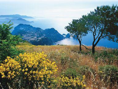 Экскурсии по пригородам Неаполя на русском языке – отзывы и цены на экскурсии 2021 года