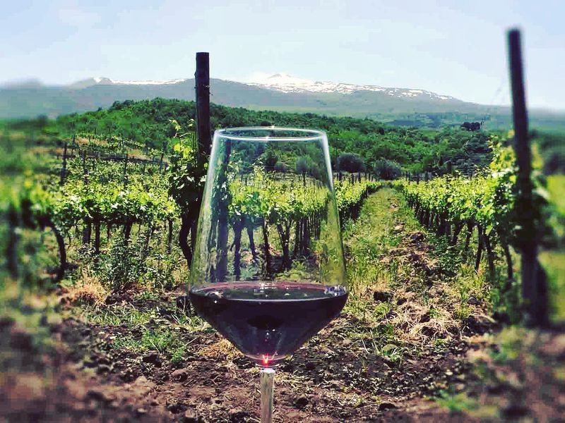Этна вбокале вина