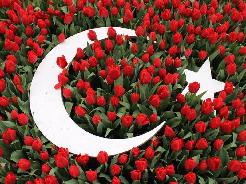 Экскурсия Османские султаны и их тюльпаны