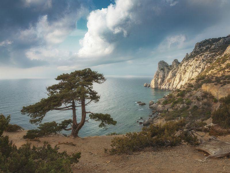 Экскурсия Насыщенное путешествие повосточному Крыму