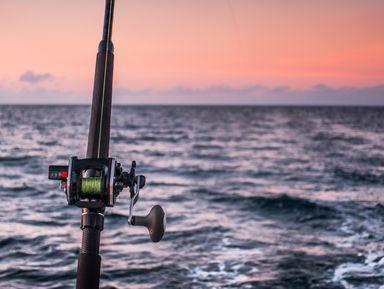 Морская рыбалка в мини-группе