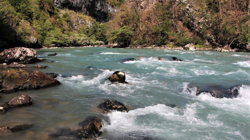 Рыбалка на горных реках из Гагры
