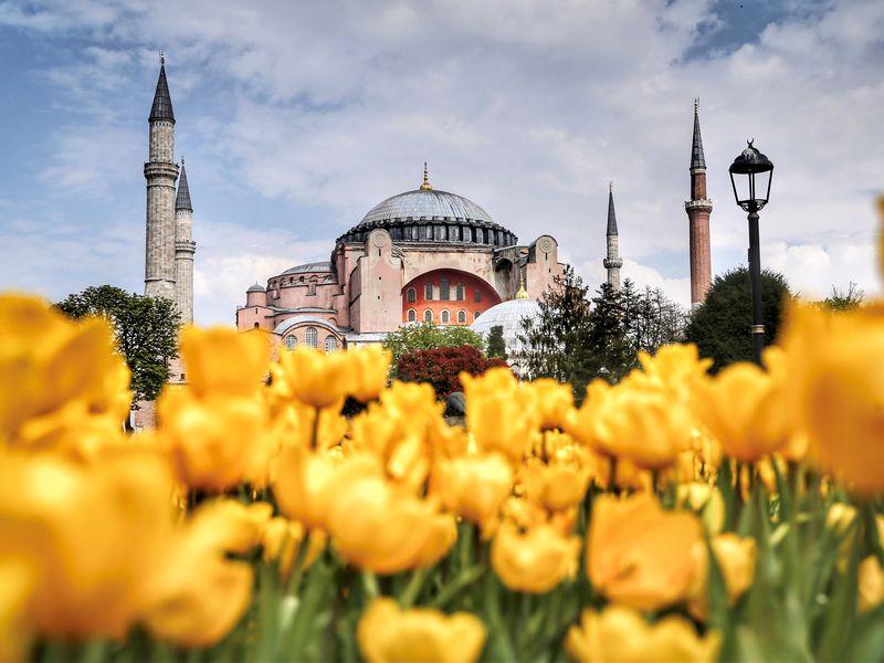 Экскурсия Стамбул с нуля