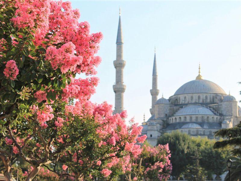 Экскурсия Ваш идеальный день в Стамбуле