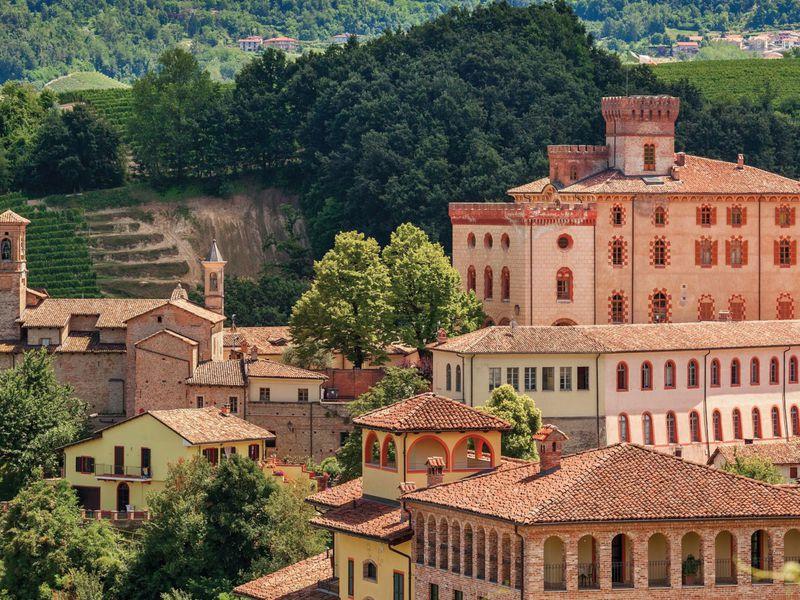 Экскурсия Из Турина в Бароло, на родину великого вина