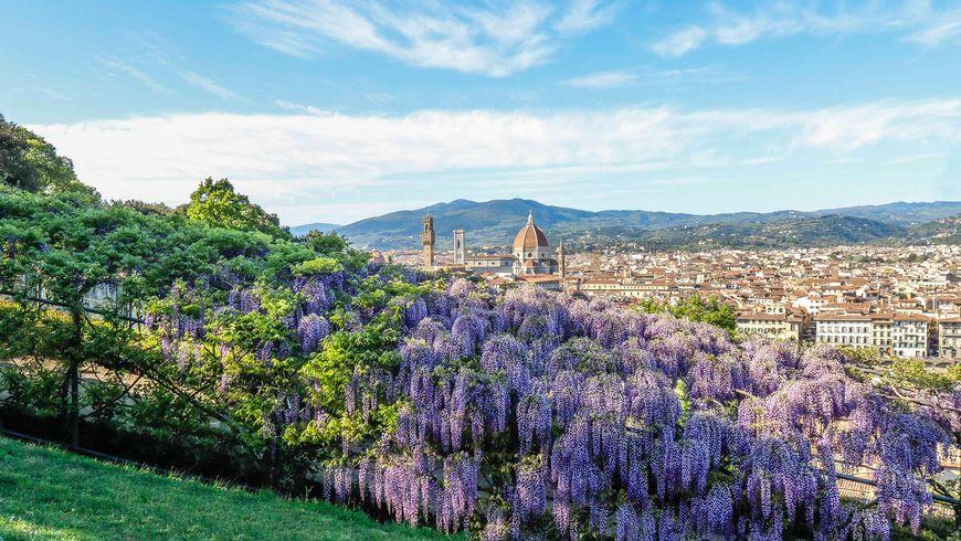 Сады Боболи и музей Бардини