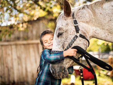 Подружиться с лошадьми в Анталии