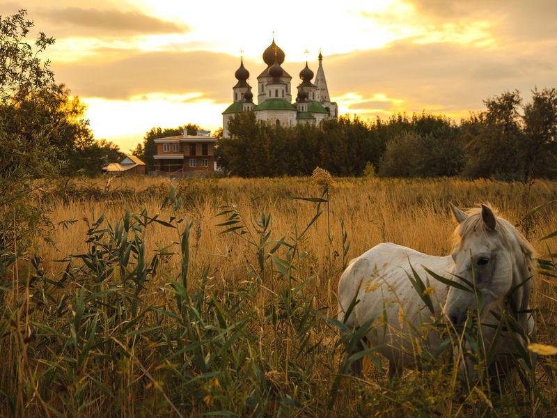 Экскурсия В Старочеркасскую— на родину донских бунтарей