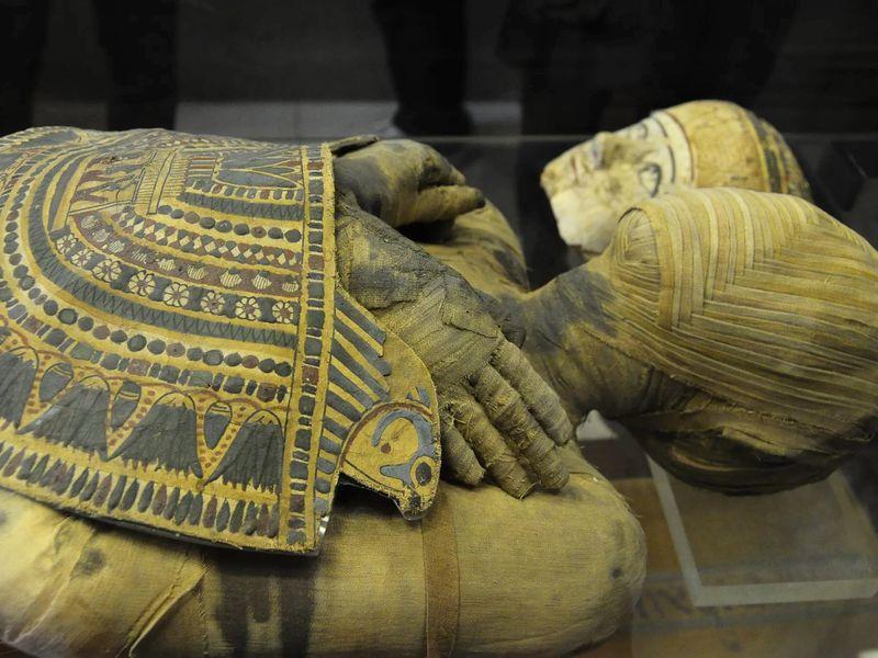 Экскурсия Охота на мумий в Эрмитаже