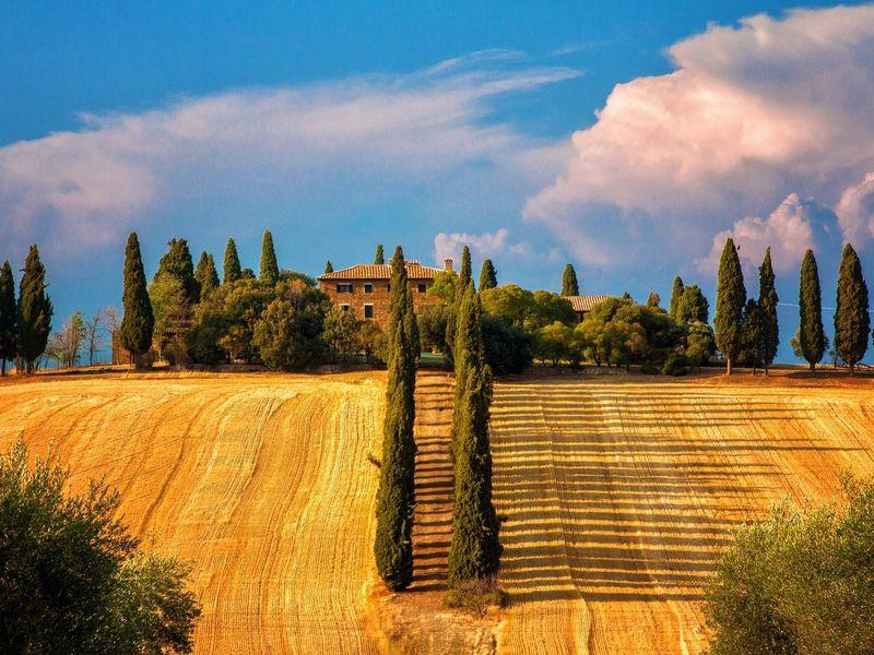 Экскурсия Гастрономический интенсив по холмам Тосканы
