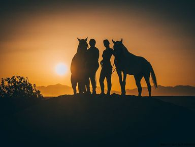 Конные прогулки по пустыне и к Красному морю