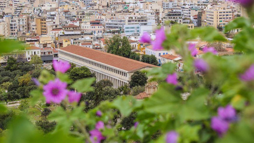 По холмам вокруг Акрополя