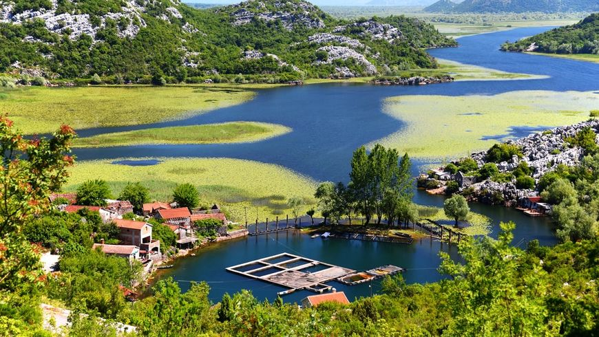 По Скадарскому озеру с черногорцем