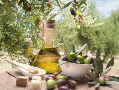 Дегустация оливкового масла и сыров на массерии