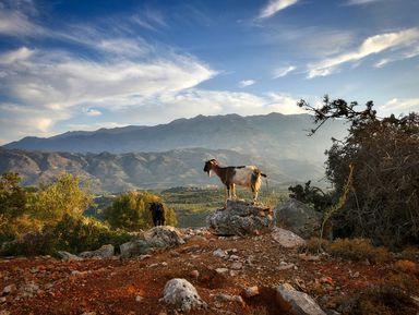 Путь ксердцу Крита