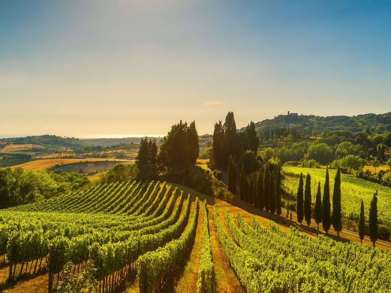 Экскурсия Из Флоренции в Тоскану на Кьянти Тур