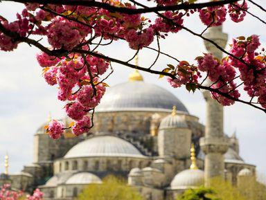 Ежедневная прогулка по Стамбулу