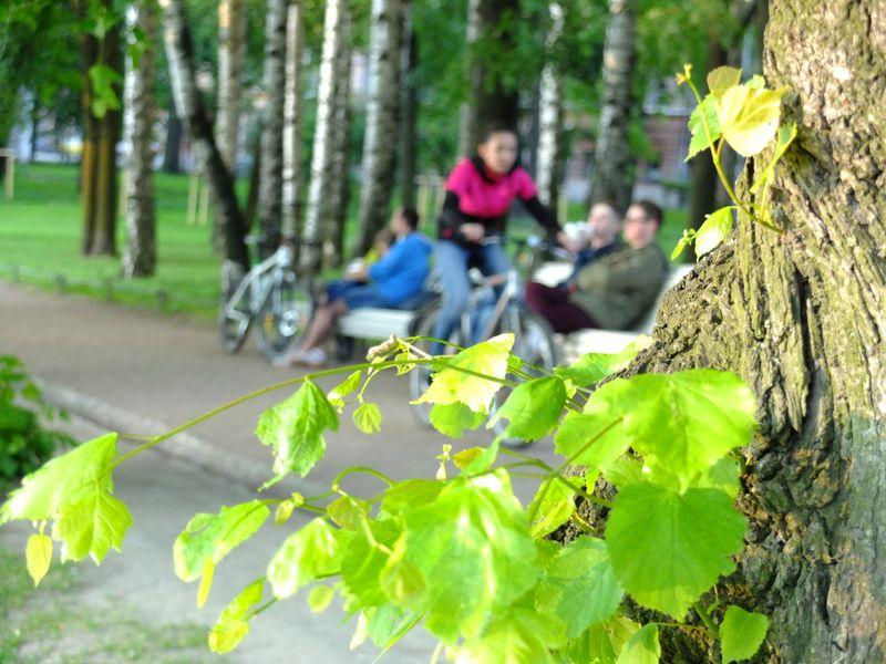 Экскурсия Нетривиальный велосипедный променад