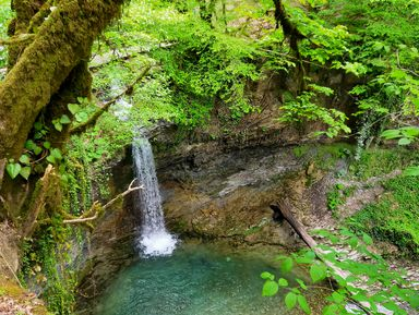 Экскурсия-поход к водопадам Сочи