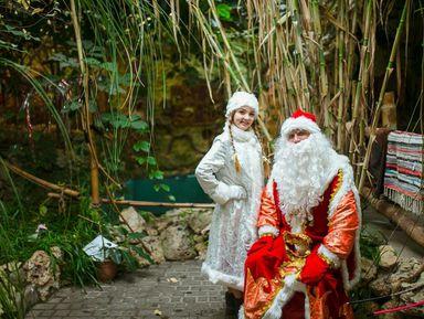 Новогодние приключения в Сочи: квест для всей семьи