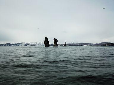 Путешествие к Тихому океану: скалы Три брата и мыс Маячный