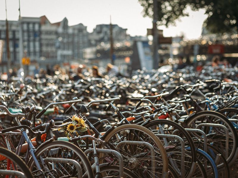Фото Велопрогулка по Амстердаму: влюбиться в город за три часа