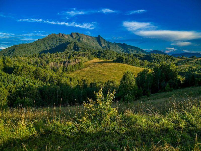 Экскурсия Треккинг в селе Турочак: хребет Салопа, «спящий дракон» Алтая