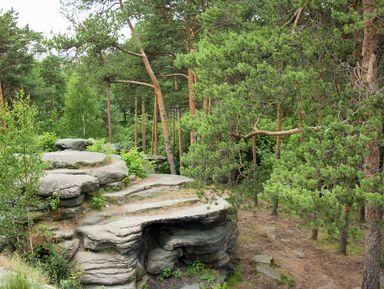 Окрестности Екатеринбурга: отКаменных палаток доозера Шарташ