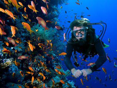 Дайвинг в Средиземном море