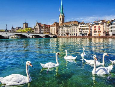 Счастливый день вЦюрихе