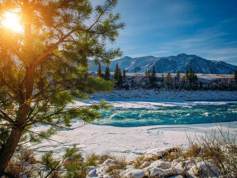 Экскурсия Путешествие в Чемал: открыть природу Горного Алтая