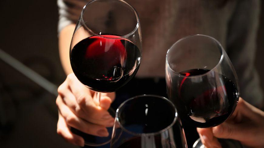 Дегустация вин древней Ликии