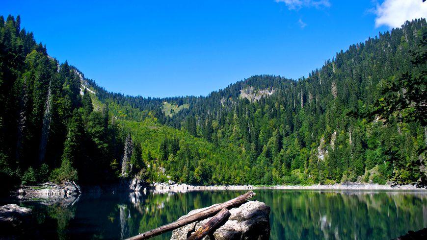 Душевное путешествие по Абхазии