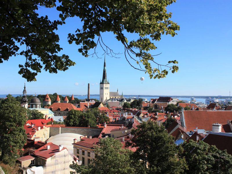 Экскурсия Весь Таллин за один день