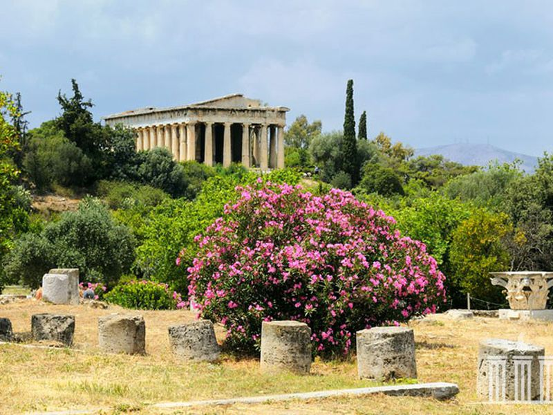 Экскурсия Древние Афины: погружение в историю Греции