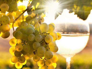 Вино и виды в Анапе!