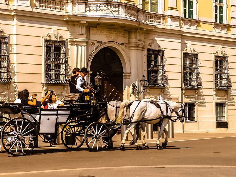 Экскурсия Вена — классика и импровизация