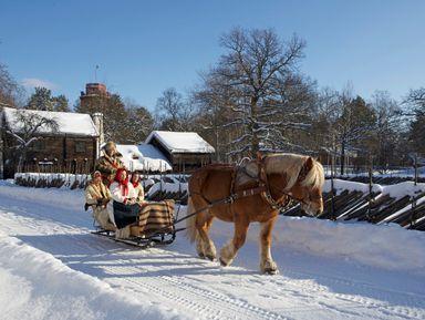 Старый город и музей Скансен в Стокгольме