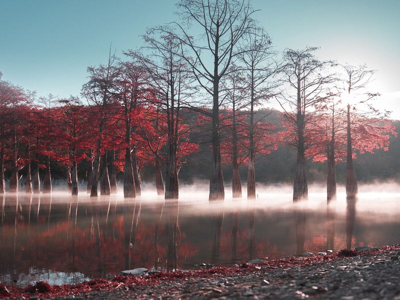 Экскурсия Кипарисовое озеро долины Сукко