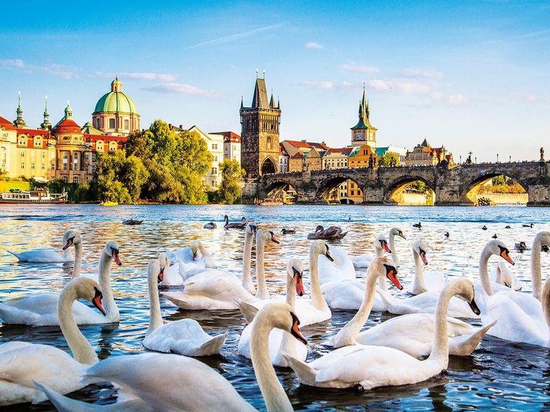 Экскурсия Ваш идеальный день в Праге