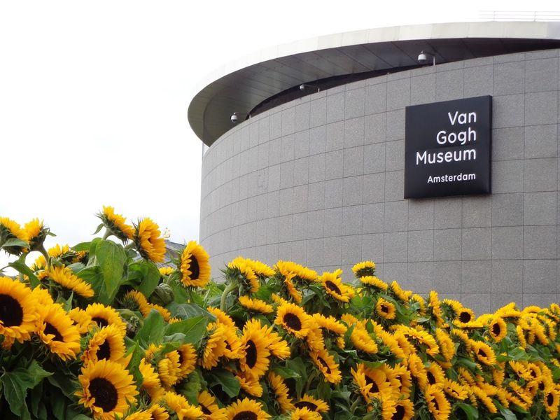 Фото Понять Ван Гога