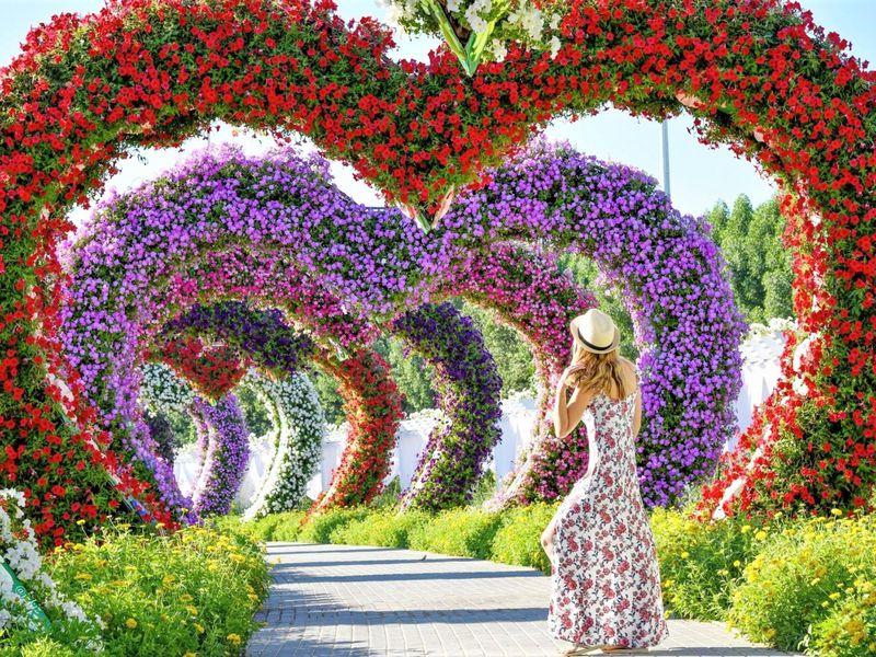 Экскурсия Современный Дубай, Парк цветов и Global Village