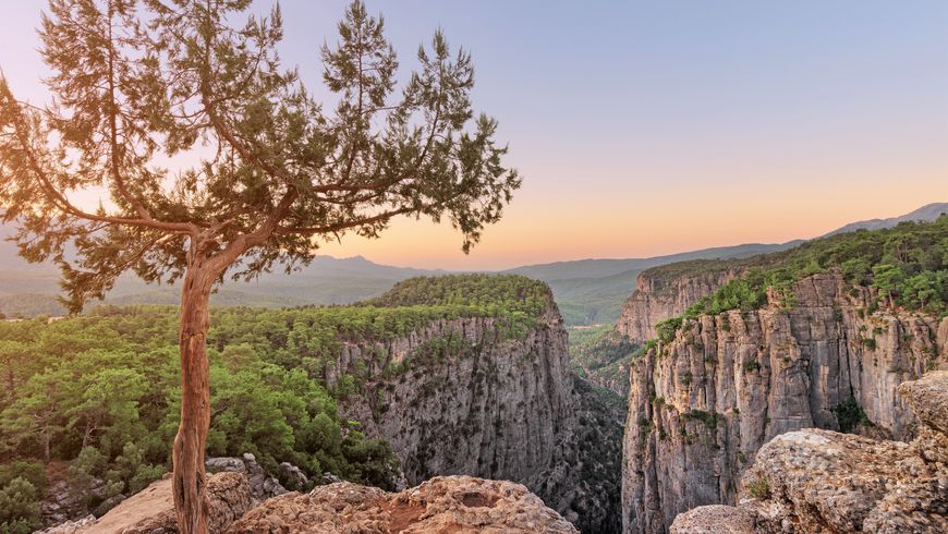 тазы каньон турция экскурсия
