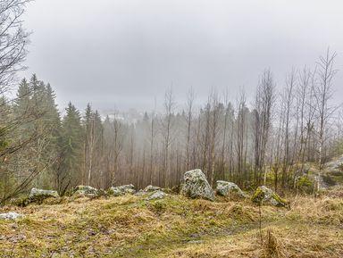 Экскурсия по природному парку Кирьявалахти