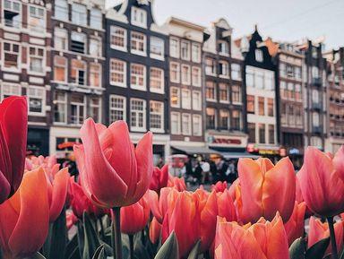 Амстердам с нуля