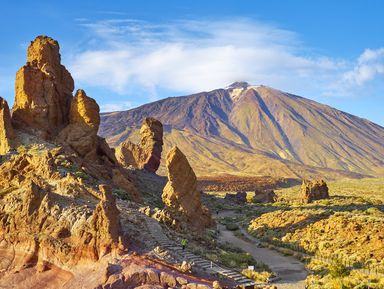 Лоро-парк и вулкан Тейде: погружение в природу Тенерифе