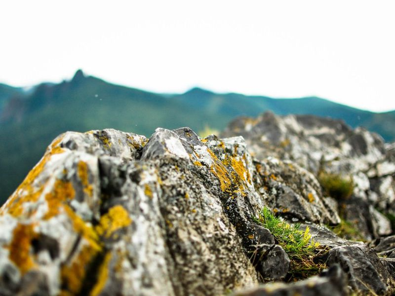 Экскурсия Три вершины Красноярска: путешествие по местам силы