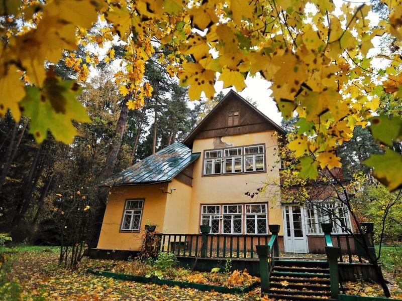 Экскурсия Уютное Переделкино
